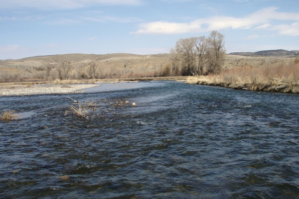 Montana fly fishing reports montana troutfitters for Gallatin river fishing report