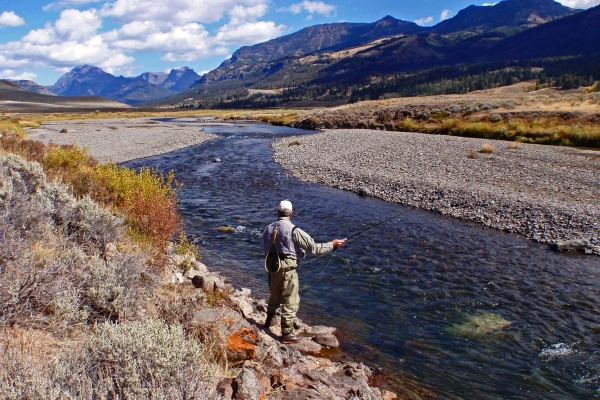 yellowstone national park fly fishing trip montana